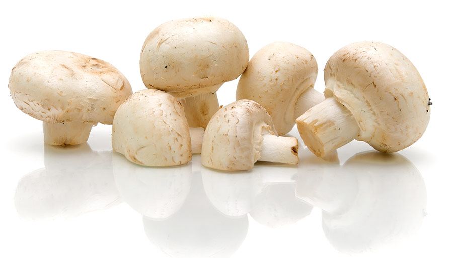 Sira-Flex Resolve can significantly enhance the shelf-life of mushrooms