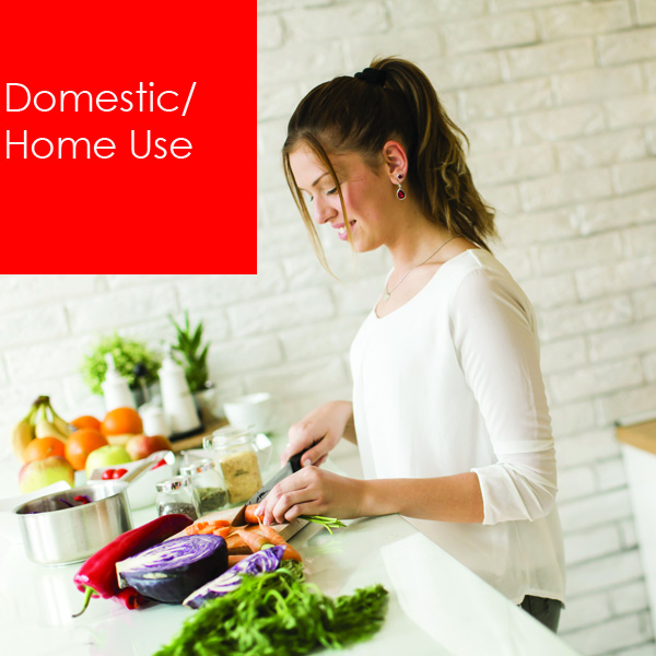 Domestic / home users