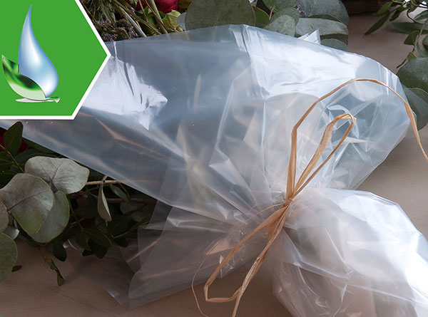 Compostable packaging films