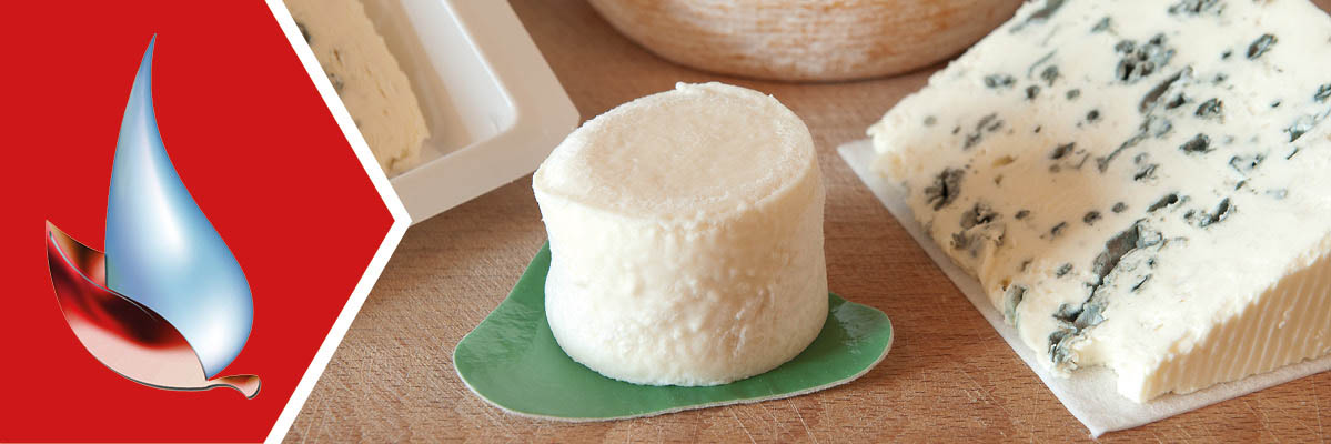 Absorbent pads for cheese