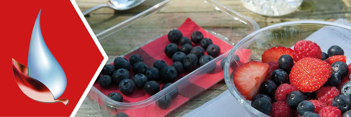 Absorbent Fruit Pads